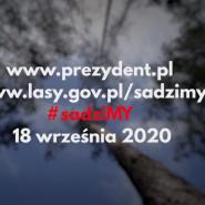 #sadziMY Las 2020