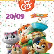 Filmowe poranki: 44 Koty