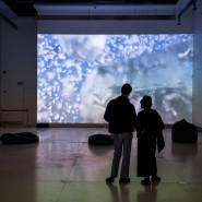 Dyskusja online wokół projektu Noise Aquarium // VICTORIA VESNA