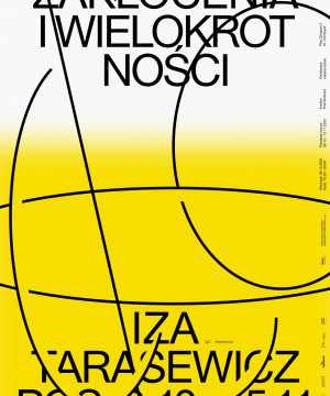 Zakłócenia i Wielokrotność - Iza Tarasewicz