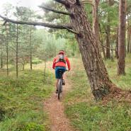 Rowery i swojska kuchnia borów nadmorskich
