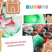 Kreatywna sobota - Mikołajowa fabryka eksperymentów