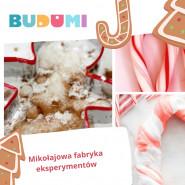 BUDU Lab - Świąteczne eksperymenty cz. 2