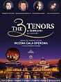 The 3 Tenors & Soprano