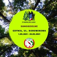 Z Mapą do Lasu Gdynia, ul. Borowikowa