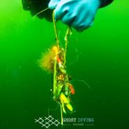 Sieci Widma. Wystawa Ghost Diving Poland i spotkanie z nurkami w Akwarium Gdyńskim.
