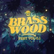 BrassWoodFest - L.U.C, Sarsa i orkiestry dęte