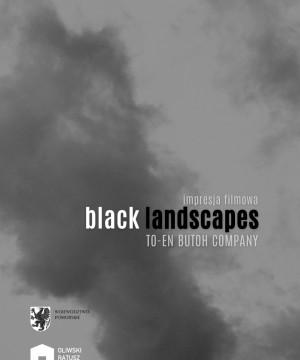 TO-EN - Black landscapes