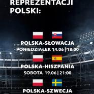 Transmisja meczów Euro 2020: Polska - Hiszpania