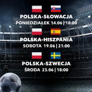 Transmisja meczów Euro 2020: Polska - Szewcja