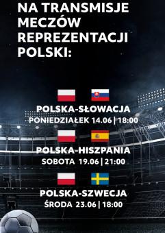 Transmisja meczów Euro 2020: Polska - Słowacja
