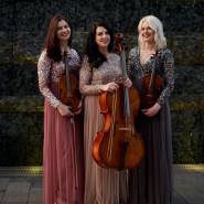Amber Trio - Klasycy swoich czasów