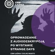 Premiera oprowadzania online z audiodeskrypcją po wystawie Strange Days