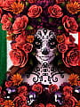 MEXICO NIGHT IN COYOTE BAR - PIĄTEK 06/08 DJ ENDI NDZ