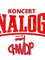 The Analogs- Klub Ucho