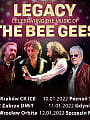 Tribute to Bee Gees