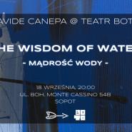 Davide Canepa - The Wisdom of Water (Mądrość Wody)