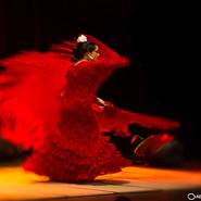 Koncert uczniów szkoły tańca flamenco anda lu