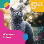 Urodzinowa Wystawa Kotów 2021/ Galeria Metropolia