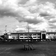 92 Stadiony: Chris Olley: wernisaż