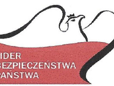 Rubinowa statuetka konkursu Lider Bezpieczeństwa Państwa 2015