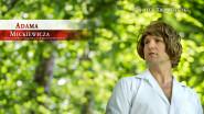 SKT 2020: Adama Mickiewicza liryczna próba odnalezienia się w branży rozrywkowej online -