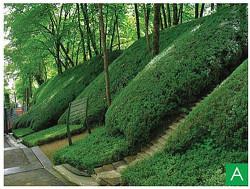 Mieszka cy wzg rza mickiewicza zaprojektowali park na zboczu tereny zielone park na zboczu - Les jardins de l imaginaire a terrasson ...