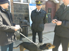 Strażnicy miejscy podczas patroli będą sprawdzać, czy właściciele psów sprzątają po swoich pupilach.