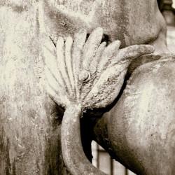 Płetwa - najchętniej kradziony element fontanny. Zdjęcie z 1954 r.