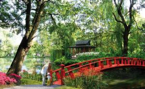 Wizualizacja planowanego ogrodu japońskiego. Mostek nad Potokiem Oliwskim prowadzi na wyspę ze stylową altanką. W tle kamienice przy al. Grunwaldzkiej.