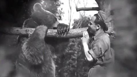 Miś Wojtek był nie tylko maskotką kompanii, ale również jej pełnoprawnym członkiem. Do końca wojny pobierał żołd, a w angielskim muzeum można obejrzeć jego książeczkę wojskową.