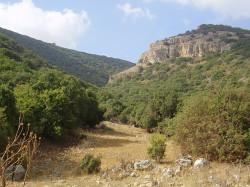 Góra Karmel w Palestynie była siedzibą pustelników, którzy dali początek Zakonowi Braci Najświętszej Maryi Panny z Góry Karmel.