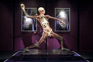 Wystawa Human Body Exhibition wzbudziła spore kontrowersje.