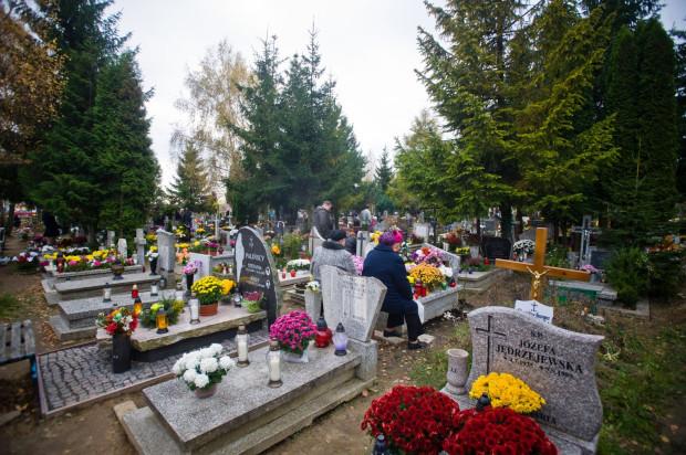 Cmentarz Łostowicki do połowy roku powiększy się o ok. 3250 miejsc grzebalnych. Ale miasto myśli już o rozbudowie kolejnych nekropoli.