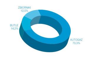 Struktura rynku LPG w Polsce w 2013 roku.