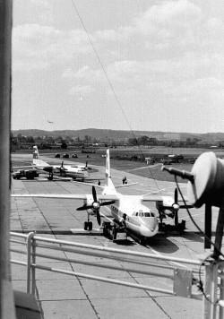 Samoloty na płycie lotniska na Zaspie.