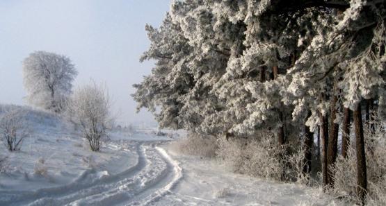 tak wygląda zima z siodełka kilka kilometrów za Trójmiastem
