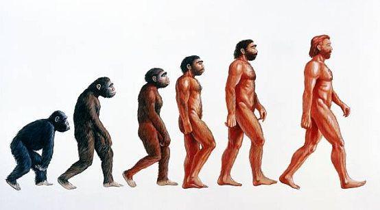 Ewolucjonizm czy kreacjonizm? Spór o pochodzenie człowieka trwa.