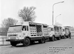 Samochody dostawcze marki Star, które rozwoziły pepsi-colę z Wrzeszcza.