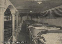 Najwięcej piwa (przed 1945 r.) browar wyprodukował w 1913 r - było to 130 tys. hektolitrów różnych trunków.