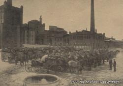Przez kilkadziesiąt lat podstawowym środkiem transportu piwa były wozy ciągnięte przez konie.