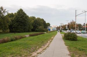 Wysoka zieleń od al. Grunwaldzkiej będzie chroniona zapisami planu. Dopiero za nią będą mogły powstać obiekty usługowe.
