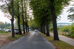 Istniejąca jezdnia ul. Opackiej zostanie oddana do użytku pieszym i rowerzystom. Nowa jezdnia ma powstać po prawej stronie, za szpalerem drzew.