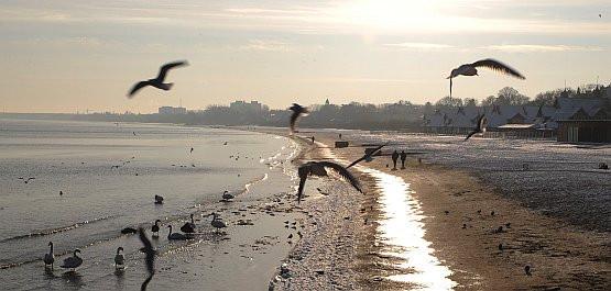 Oceniając jakość życia w regionie nie sposób nie brać pod uwagę tak ważnych, a jednak niezmiernie trudno wymiernych czynników, jak stan środowiska naturalnego, uroda krajobrazu, czy poczucie regionalnej tożsamości. Nz. plaża w Sopocie, w piękny zimowy dzień.