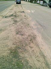 Zanieczyszczona ścieżka i trawnik na al. Hallera.