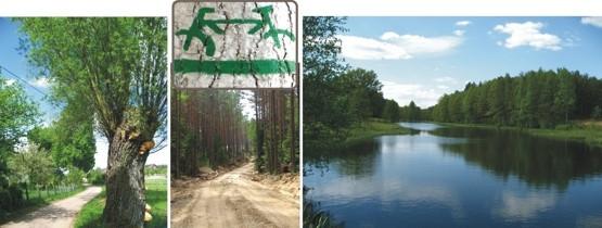 Krajobraz rekompensuje niedogodności niektórych piaszczystych odcinków, na których rower trzeba nieść