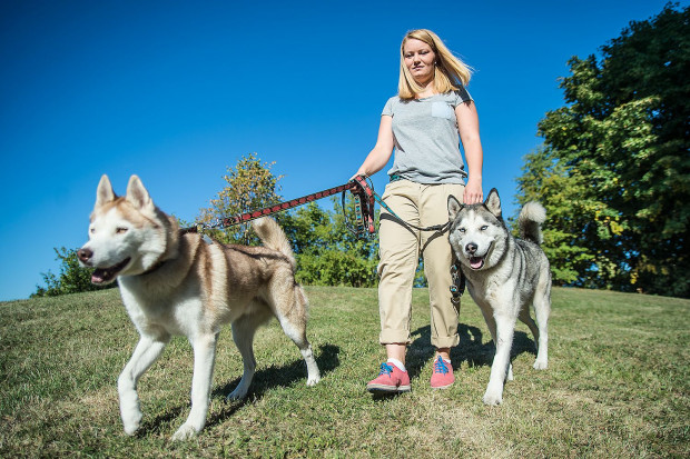 Iza Buksińska podkreśla, że wychodzenie z więcej niż jednym psem wymaga przemyślanej strategii. Psy muszą się wcześniej zapoznać i tolerować takie rozwiązanie.