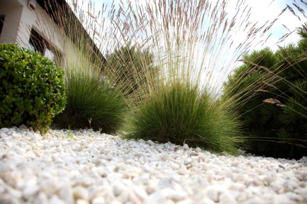 Umiejętnie dobrane kruszywa ozdobne wpiszą się w każdy klimat i styl ogrodu, niezależnie od tego, czy preferujemy ogrody naturalne, nowoczesne czy np. japońskie.