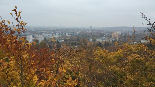 Schowana pośród drzew wieża wieńczy szczyt wzgórza Głowica, czyli najwyższego wzniesienia na terenie Lasów Oliwskich, wchodzących w skład Trójmiejskiego Parku Krajobrazowego.