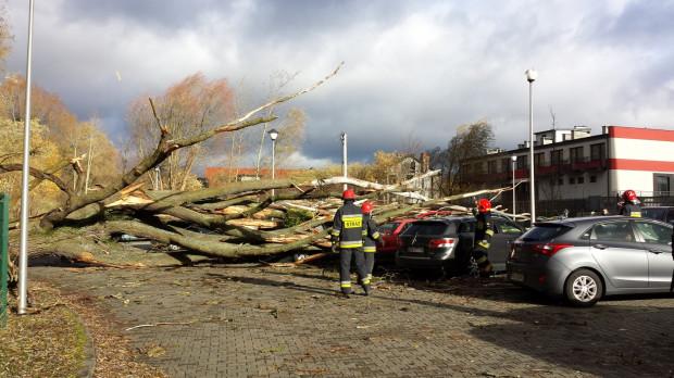 Zniszczone auta na Myśliwskiej w Gdańsku